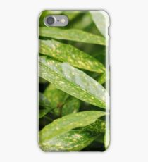 Speckled Plant iPhone Case/Skin