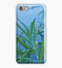 Aquatic Beauty iPhone Case/Skin