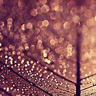 copper rain by Ingrid Beddoes