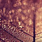 copper rain by Ingrid Beddoes