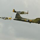Sally B and Escort by Andy Jordan