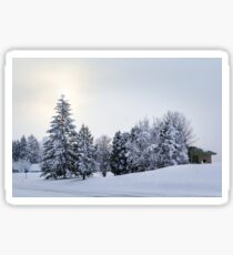 The Winter Sticker