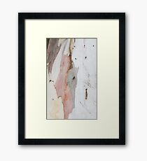 TREE, BARK, TEXTURE, color, Eco, Ecology, Nature, Natural World Framed Print
