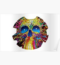 Psychedelic Skull Poster