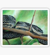 Friendly Black Rat Snake Sticker