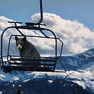 riding the lift by Istvan Hernadi