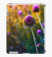 DSC_3588 iPad Case/Skin