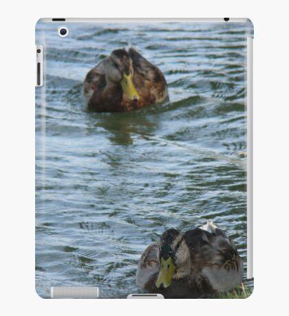 Ducks In a Row iPad Case/Skin