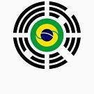 Korean Brazillian Multinational Patriot Flag Series by Carbon-Fibre Media