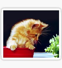 Cat On Red Tin Sticker