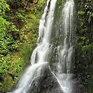 Elvy Waterfall by srhayward