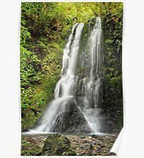 Elvy Waterfall Poster