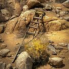 The Ladder by Patito49
