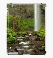 Latourelle Falls iPad Case/Skin