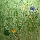 Meadow Grasses by Elaine Bawden