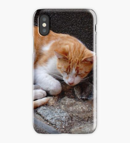 Afternoon Nap iPhone Case