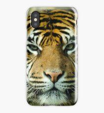 Amur Tiger Eyes iPhone Case/Skin