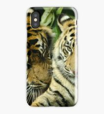 A Mothers Love iPhone Case/Skin