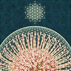 Protea Flower of Life by InSearchOfTheDivine Jessica Curtis