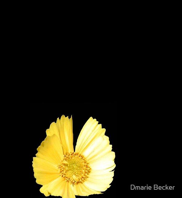 Alone ©  by Dmarie Becker