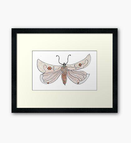 The Endangered Austyn Teal Moth (one-line #123) Framed Print