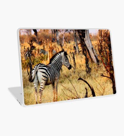 Zebras at sunset Laptop Skin