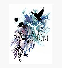 EXPECTO PATRONUM HEDWIG WATERCOLOUR Photographic Print