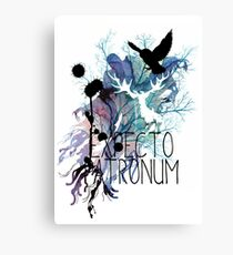 EXPECTO PATRONUM HEDWIG WATERCOLOUR 2 Canvas Print