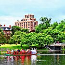 Boston MA - Boston Public Garden by Susan Savad