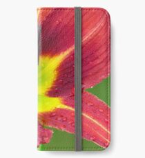 Bold and Beautiful iPhone Wallet