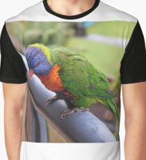 Bird - Rainbow Lorikeet Graphic T-Shirt