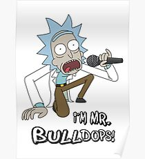Rick and Morty – I'm Mr. Bulldops Poster