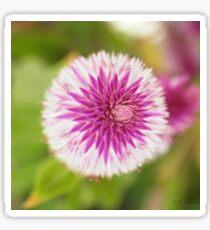 Flower - 2 Sticker