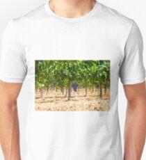Red grapes at Saint Tropez vineyard, France T-Shirt