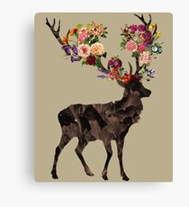 Spring Itself Canvas Print
