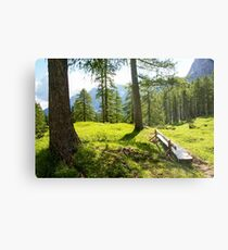 Slovenia, Julian Alps Metal Print