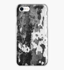 bark of a Platanus  iPhone Case/Skin