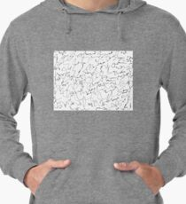Scribbling on the wall  Lightweight Hoodie