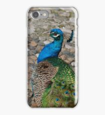 A Flair for the Dramatic iPhone Case/Skin