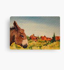 Cripple Creek Donkey~Colorado Canvas Print