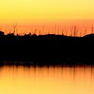 Wivenhoe Sunset 1 by Truenature
