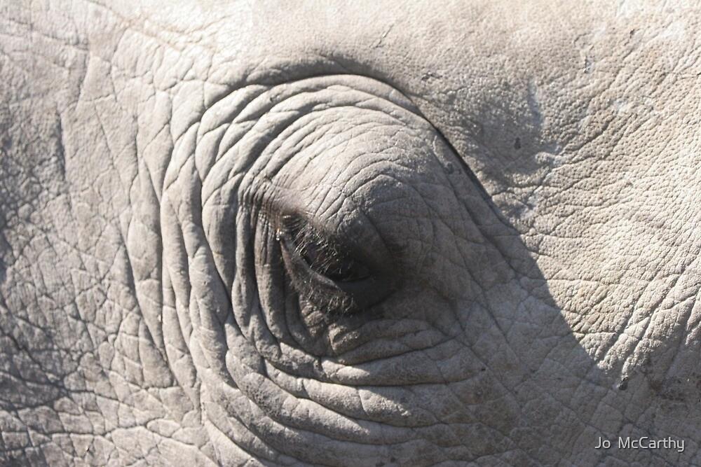 Rhino eye by Jo  McCarthy