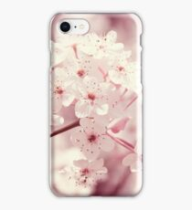 Pink Dogwood Blossoms iPhone Case/Skin