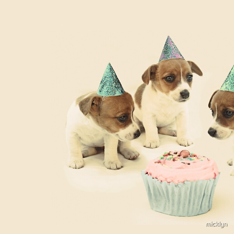 Vintage puppy birthday card hardcover journals by micklyn redbubble vintage puppy birthday card bookmarktalkfo Image collections