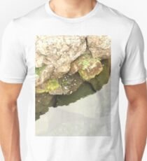Coins in Icelandic river T-Shirt