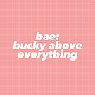 Bae: Bucky Above Everything by kinnycatherine