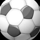 Soccer Ball by Liron Peer