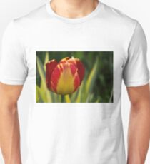 Sparkles and Warmth - a Red and Yellow Tulip in the Spring Rain T-Shirt