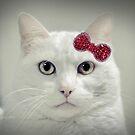 My Hello Kitty  by ibjennyjenny