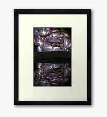 Mystified Framed Print